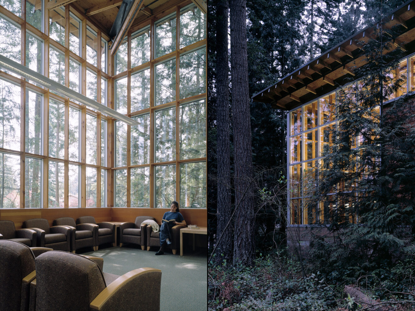 Maple Valley Library