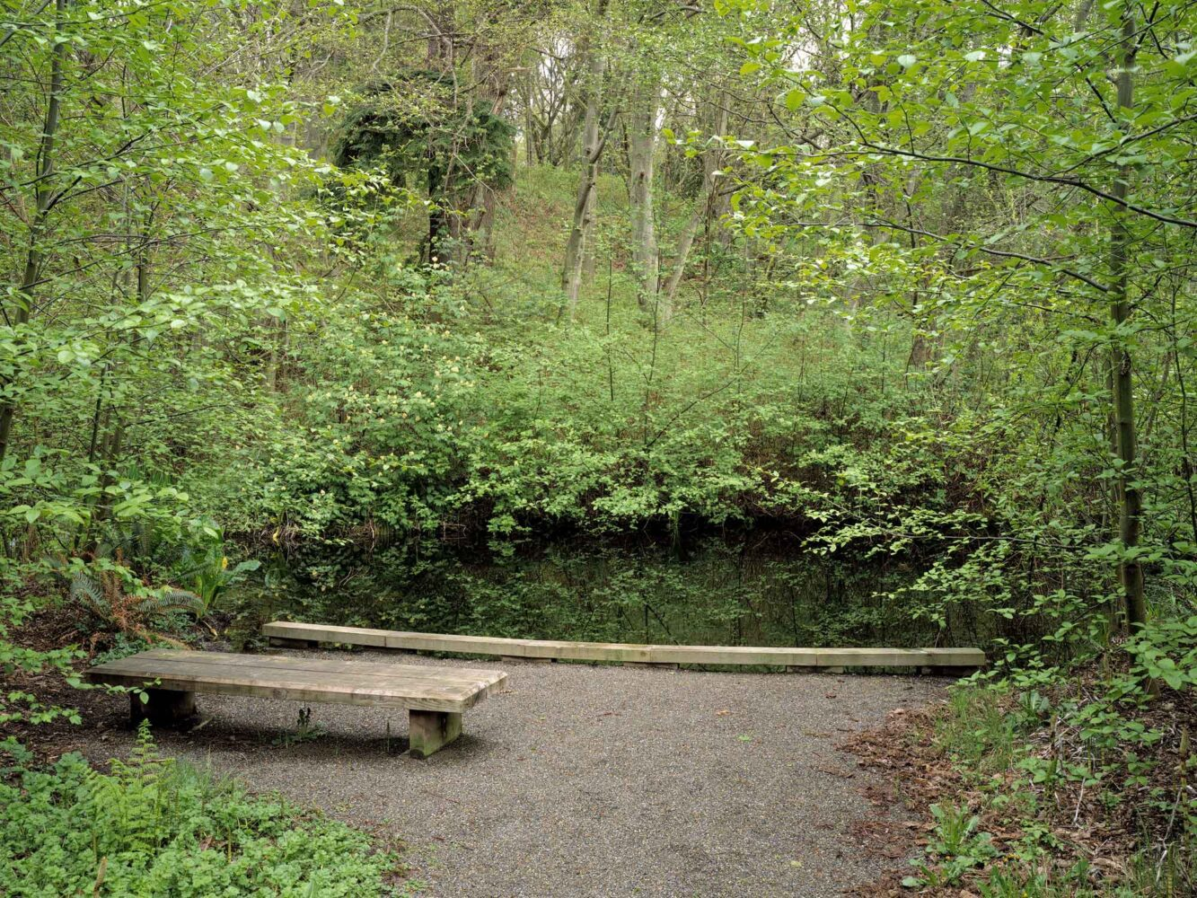 10_H---Wetland-with-Bench